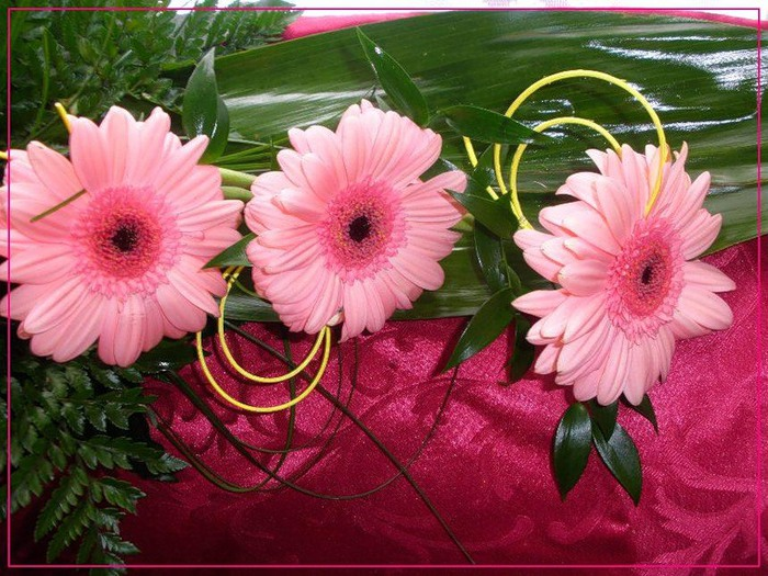 Счастья вашей семье открытки с цветами