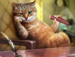 Чужой против хищника. Как жить в одной квартире с животными и не сойти с ума