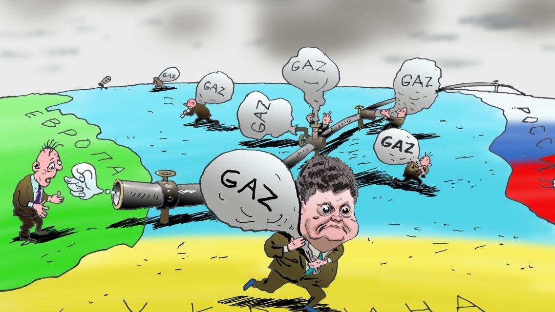 Польша в шоке – Украина не с…