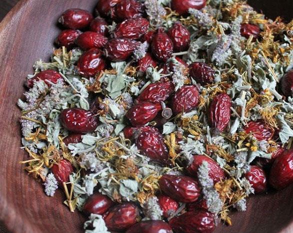 правила хранения лекарственных растений