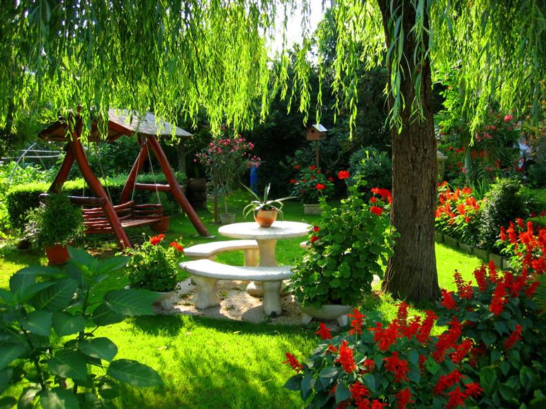 долину уютный сад своими руками фото которые