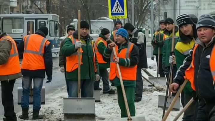 Из России выдворят больше миллиона мигрантов-нелегалов тысяч, мигрантов, численность, находятся, территории, детей, чтобы, предложил, президент, Путин, которые, страны, стран, блогеровКампания, работу, уберем, будут, подвергнуты, попала, наказанию