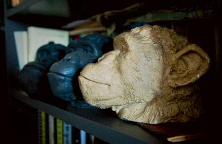 Сергей Савельев: Называю вас обезьяной