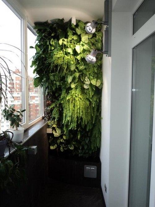 Как сделать зимний сад на балконе