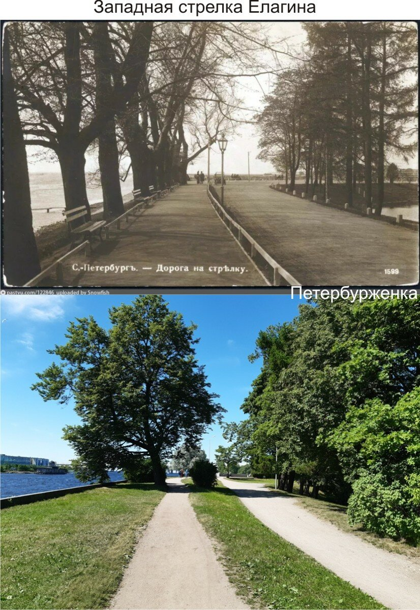 Сравнительные фотографии любимого места петербуржцев - 100 лет назад и сейчас
