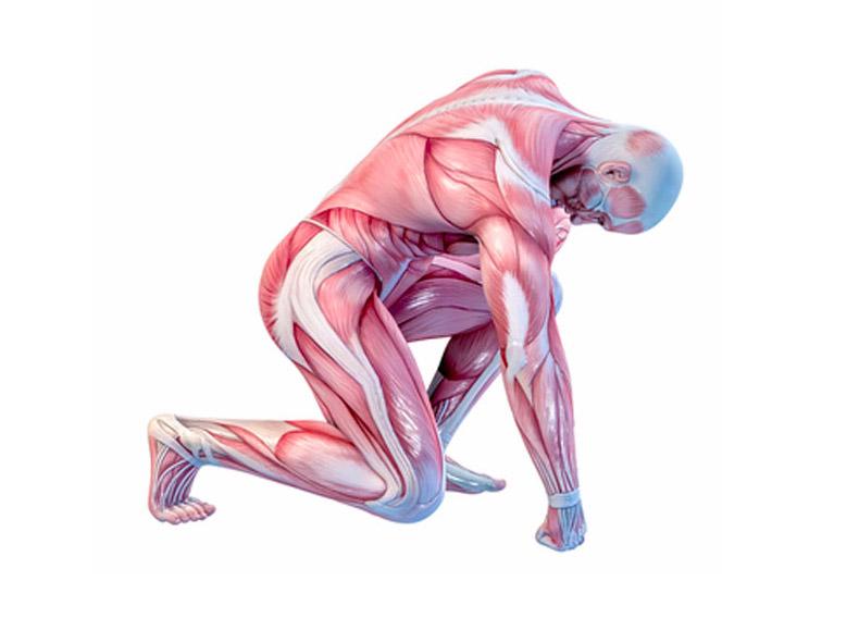 Сергей Бубновский: 5 секунд лечения холодом или пожизненная боль в суставах? здоровье,кровообращение,лечение,суставы