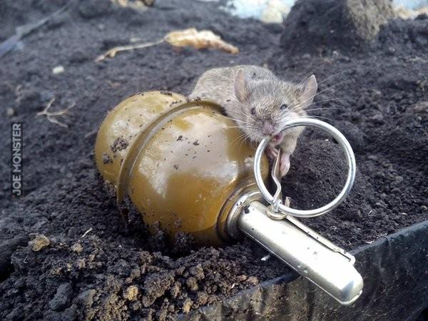 Полиция Волгоградской области провела расследование, которое войдет анналы криминалистики.