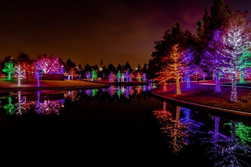 Праздник к нам (и к ним) приходит: пост о том, как украшают деревья во всём мире гирлянда, город, декорации, дерево, новый год, светящиеся деревья, украшения, эстетика