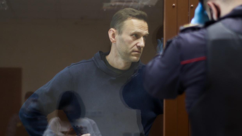 Госдума и МИД России обсудили нестыковки в докладе ОЗХО по Навальному Политика