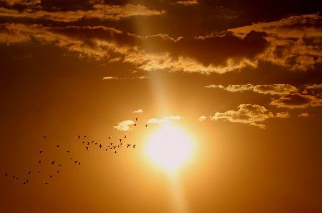 Ученые рассказали, когда закончатся «антивспышки» на Солнце