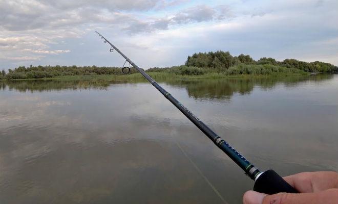Закинул удочку и вода закипела от рыбы