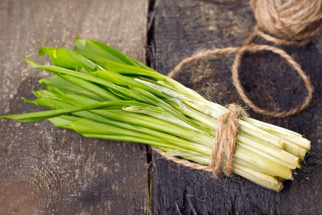 Черемша: полезные свойства и особенности выращивания здоровье
