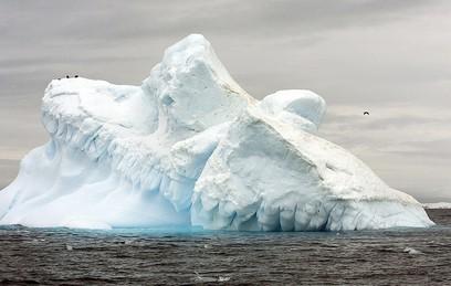 В Ассоциации полярников рассказали об отколовшемся айсберге
