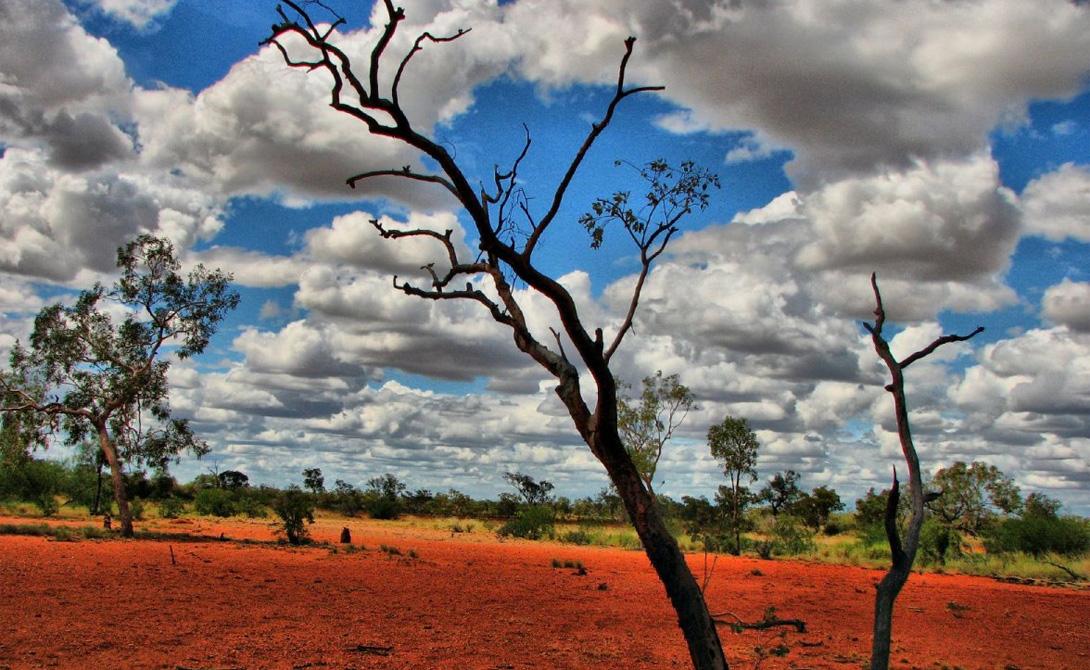 ПустошиАвстралияПроводить постоянные замеры в австралийской глубинке достаточно непросто, но этот малонаселенный регион прекрасно известен своим знойным характером, особенно проявляющимся в периоды засухи. Рекорд Пустоши поставили в прошлом году: спутник NASA отчитался о замерах в 70 градусов.