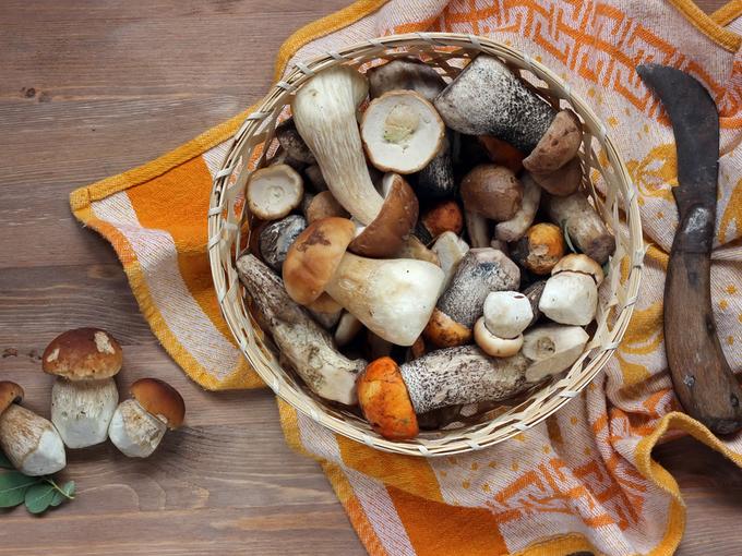Как правильно чистить грибы: 5 проверенных секретов - Smak.ua