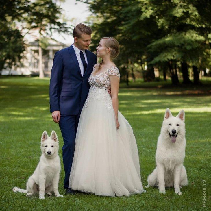 Свадебная фотосессия с домашними любимцами