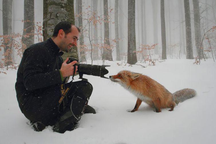 18 причин, почему фотограф дикой природы самая лучшая работа в мире
