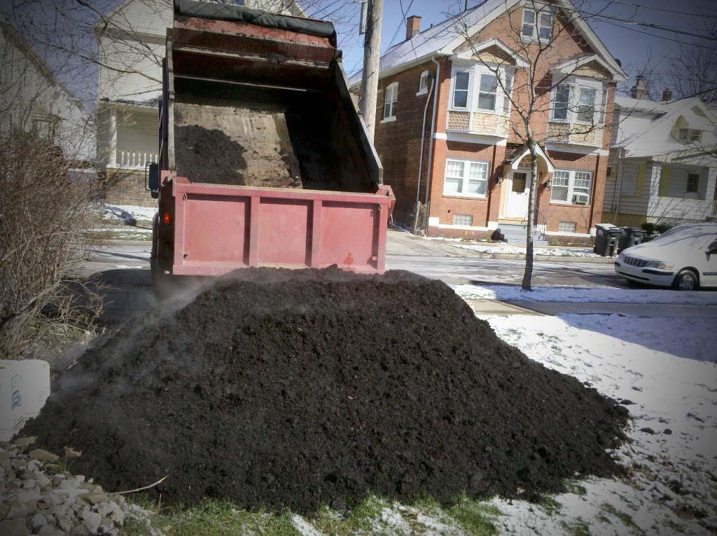 Нужно ли осенью вносить чернозём на участок?
