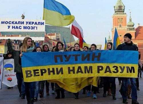Украинские русофобы готовы н…