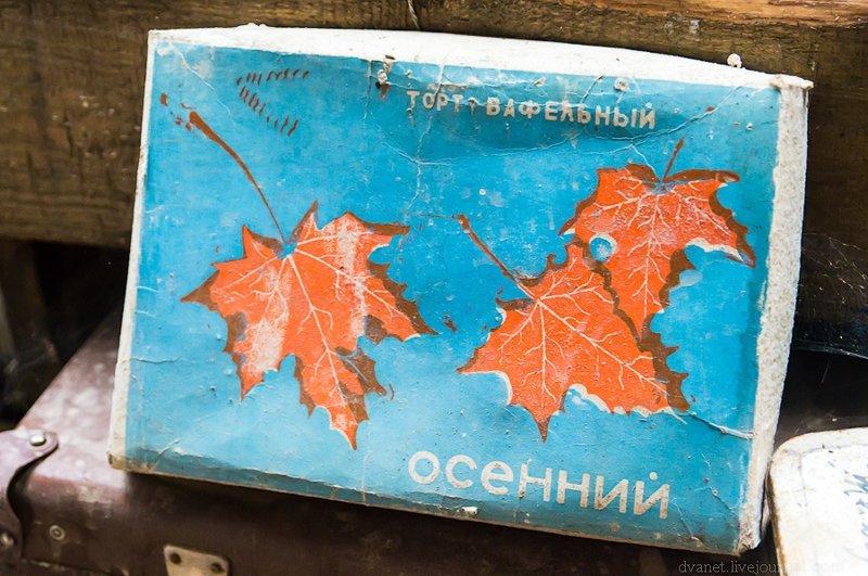 В такой же коробке из-под торта у моей бабушки хранились какие-то бумаги и фотографии: Илевники, в мире, вещи, люди, старьевщик