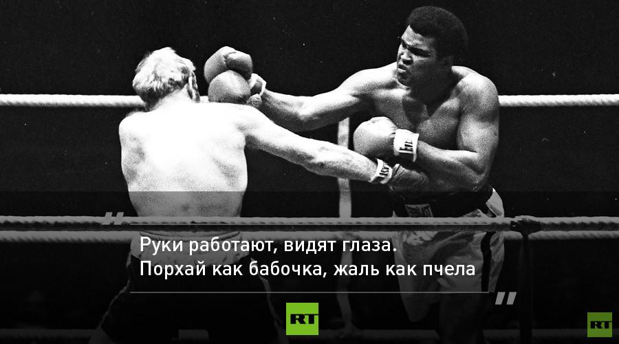 Картинки о боксе с цитатами