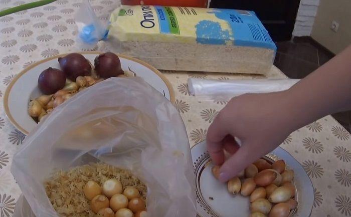 Полиэтиленовый пакет, 200 грамм опилок и несколько маленьких луковиц. Результат приятно удивит!