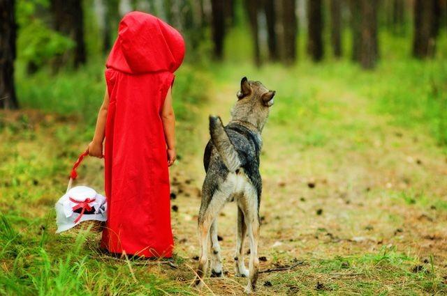 Тайны Красной Шапочки. Что скрыл от нас автор самой знаменитой сказки? БРАТЬЯ ГРИММ, Шарль Перро, красная шапочка, факты