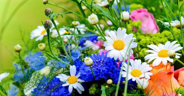 Какие цветы надо поставить в…