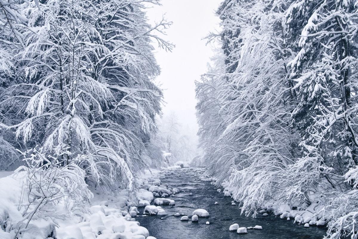 «Зимняя сказка»: пейзажные фотографии заснеженной природы