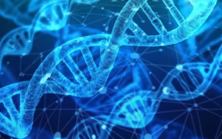 Мутация в организме помогает людям не бояться холода. Как это работает? гены,здоровье человека,исследования,медицина,научные эксперименты
