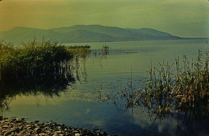 По их словам, пейзажи на некоторых снимках похожи на Бухтарминское водохранилище барахолка, в мире, геолог, клад, люди, ностальгия, фото, чемодан