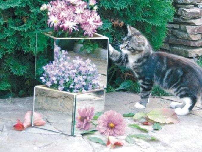 Зеркало в саду: идеи декора, с потрясающим эффектом декор,ландшафтный дизайн