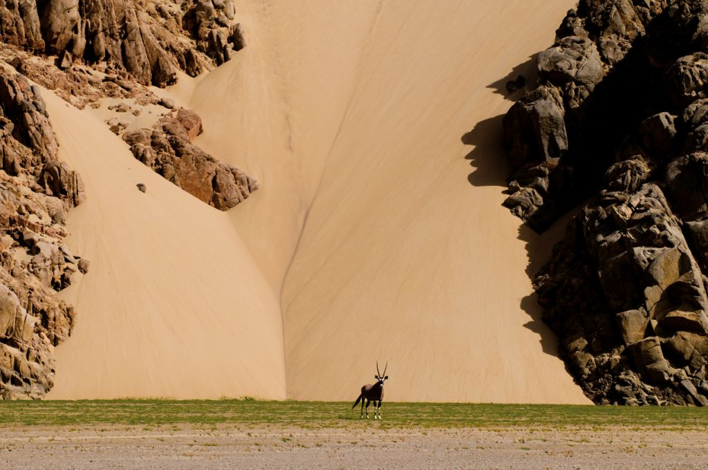Национальный парк Берег скелетов в Намибии (Skeleton Coast Park)