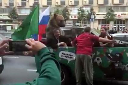 Разъезжающий по Москве медведь напугал американцев антисемитским жестом