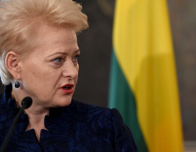 Президент Литвы нашла источн…