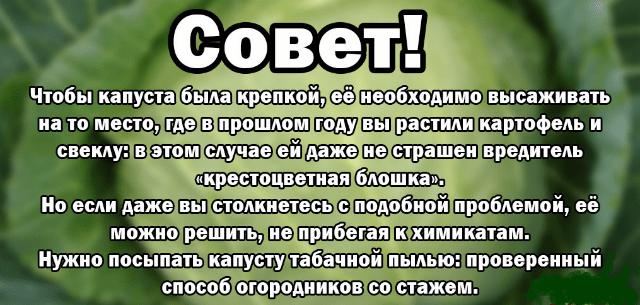 БЕРЁМ НА ЗАМЕТКУ!