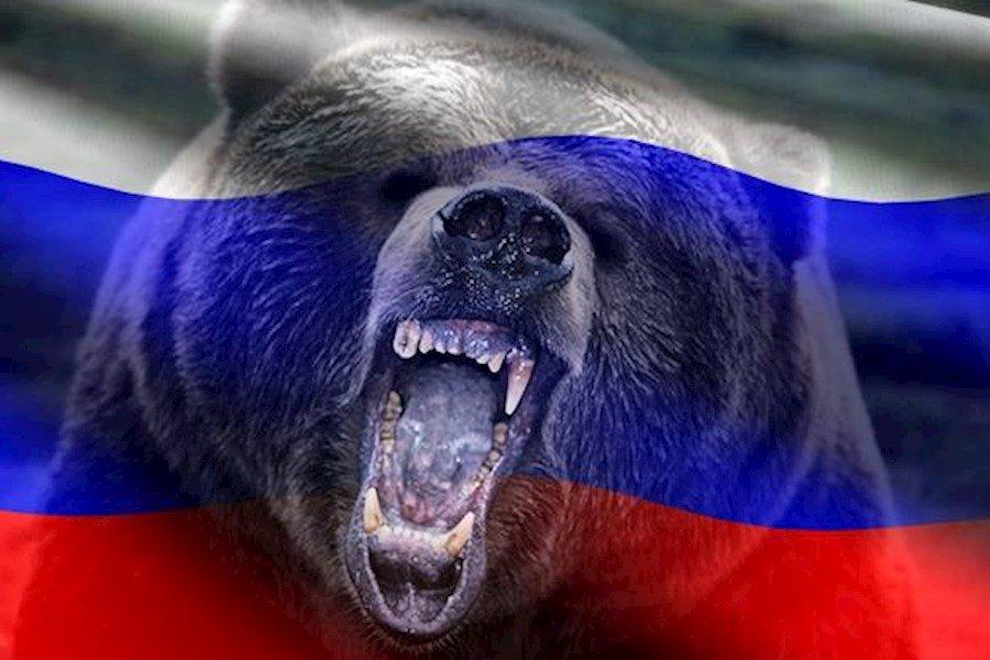 Картинки русские медведи, день чекиста