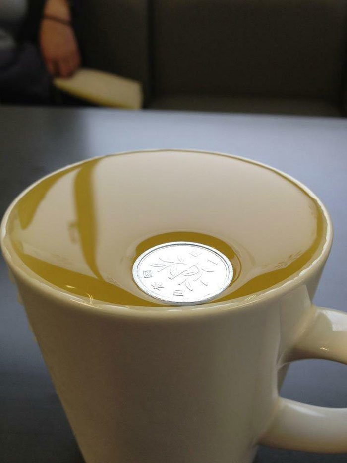 Монета в 1 японскую иену так мало весит, что не нарушает поверхностного натяжения воды всемирное тяготение, забавно, закон гравитации, истории в картинках, неожиданно, против законов физики, удивительно, удивительное рядом