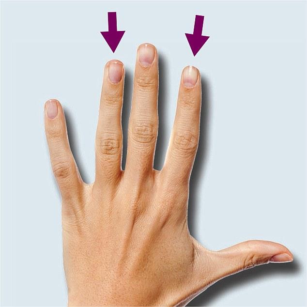 есть мнение, указательный и безымянный палец фото обеспечивает гармоничное развитие