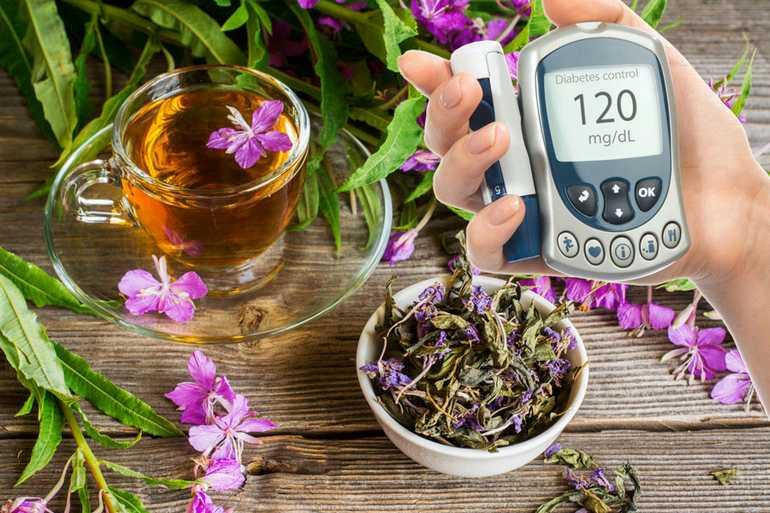 Иван чай от диабета