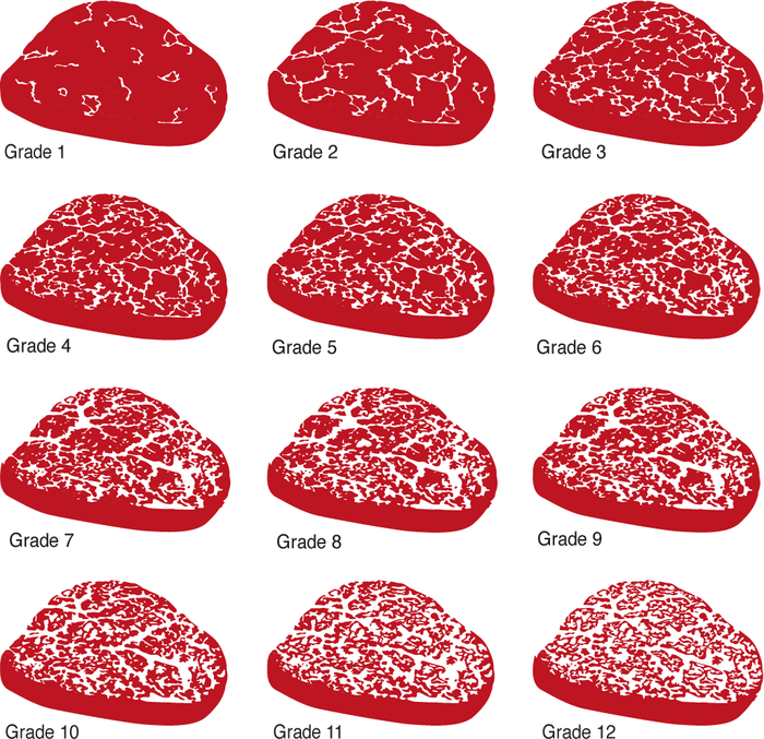 Вагю - Самая дорогая говядина в мире Вагю, Wagyu, Мясо, Длиннопост