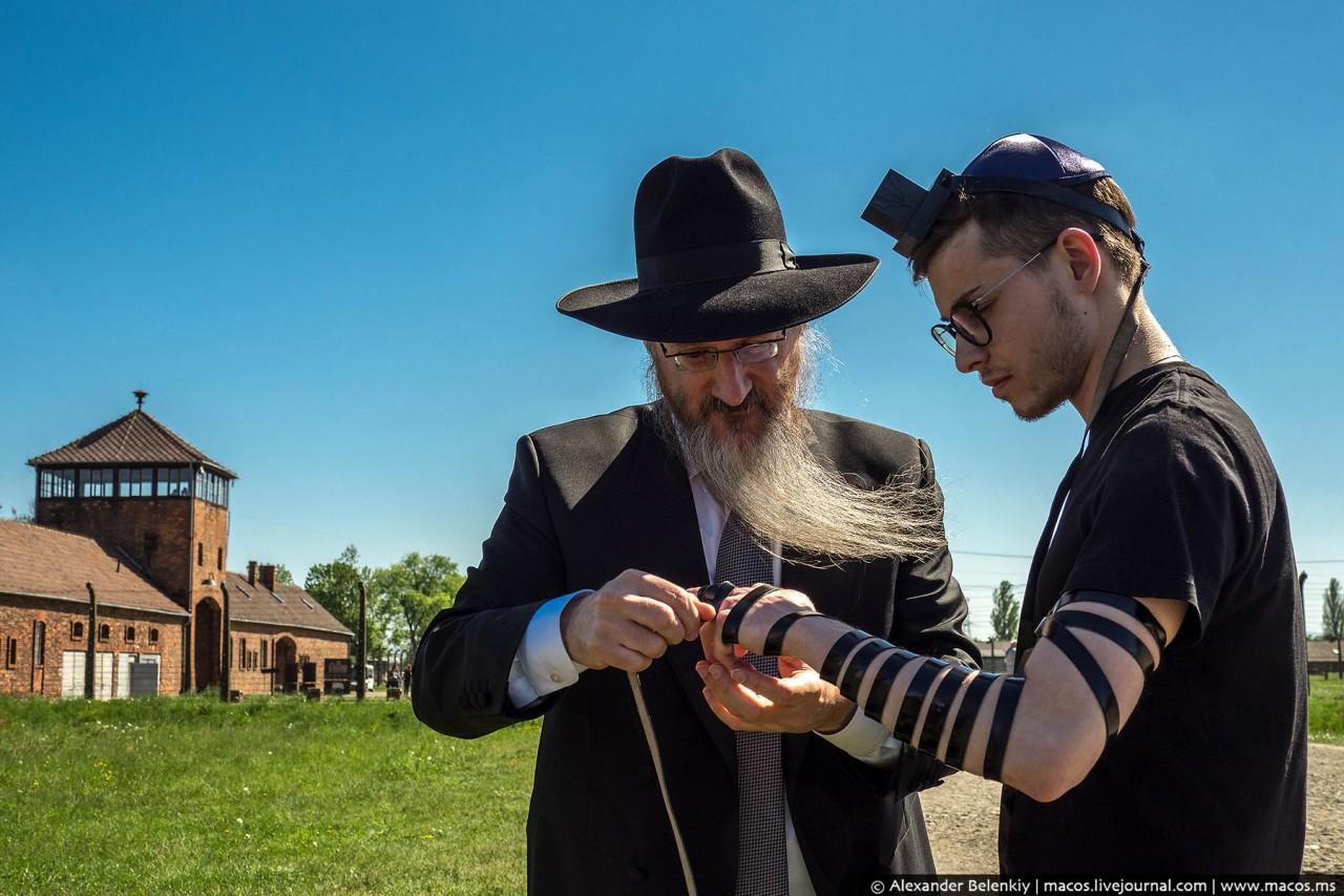 Зачем евреи возвращаются в Освенцим