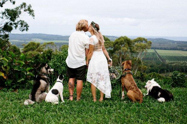 Верный пес молодоженов снимал всю свадьбу