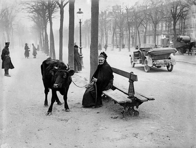 Пожилая женщина, бежавшая из зоны боевых действий со своей коровой, сидит на скамейке в Амьене, Франция, 28 марта 1918 г.