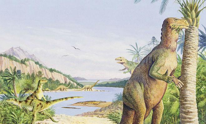 В скале нашли окаменелого динозавра