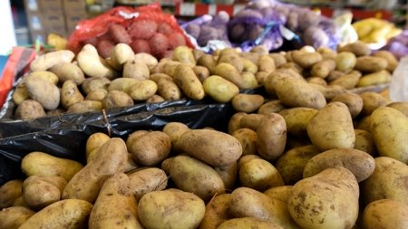 В России могут закрыть все сельскохозяйственные рынки