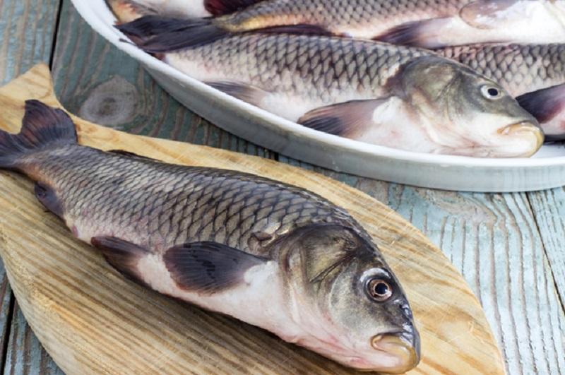 можно ли размчгчить мелкие рыбные косточки