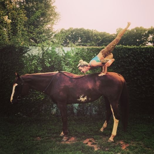 Йога на лошади? Девушкам позволено все! амазонки, красиво, лошади и девушки, наездницы