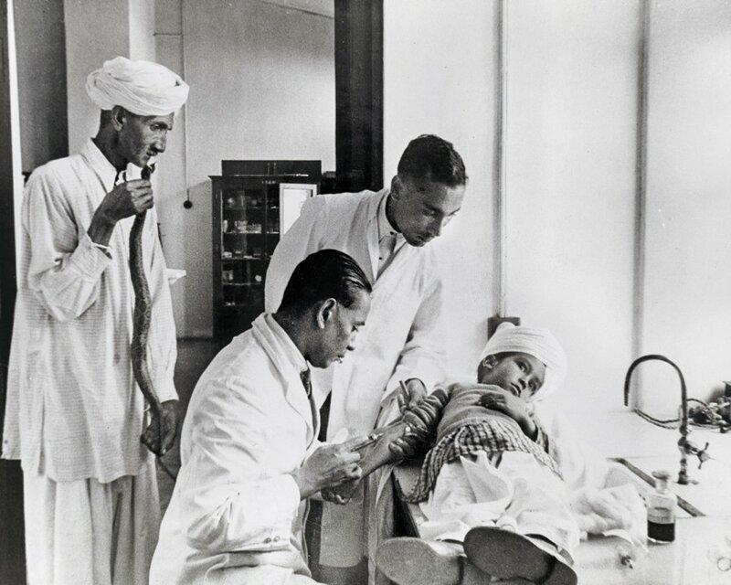 Мальчик проходит лечение в исследовательском институте в Казаули в Гималаях после того, как его укусила гадюка Расселла - самая смертоносная в Индии. 1943 год. Его отец принёс мертвую змею для идентификации.