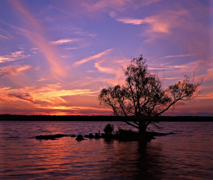 Клочок суши с одним деревом уже считается островом. | Фото: en.wikipedia.org.